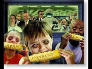Zombie GMO
