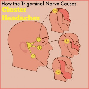 The trigeminal nerve on man's face, neuralgia